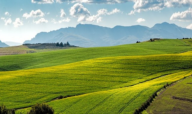 Agricultural Sciences Grade 11 Free Study Guide Download