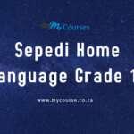 Sepedi FAL Paper 1 May-June 2019 Past Exam Papers